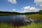 Naturschutzgebiet Moor Weieherwiesen
