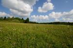 Landschaft im Naturschutzgebiet Weierwiesen